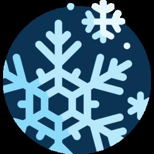Was passiert im Winter auf der Blühfläche