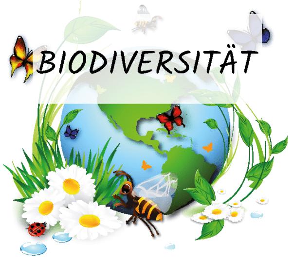 Werden Sie jetzt Blühpate des Projekts Biodiversität