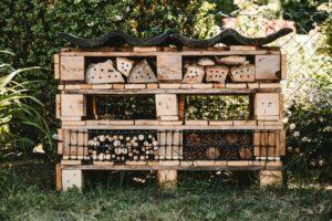 Blog Blühfläche Insektenhotel